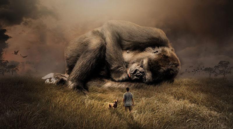 Animales que se extinguieron en la década de los 10s